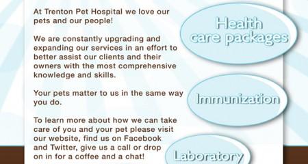 Pet Hospital – Flyers